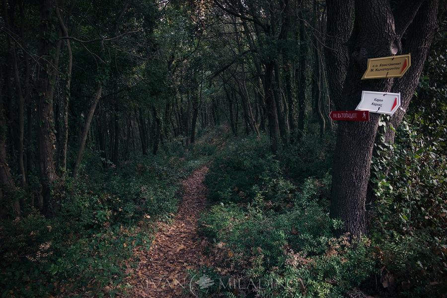 По пътеките атонски